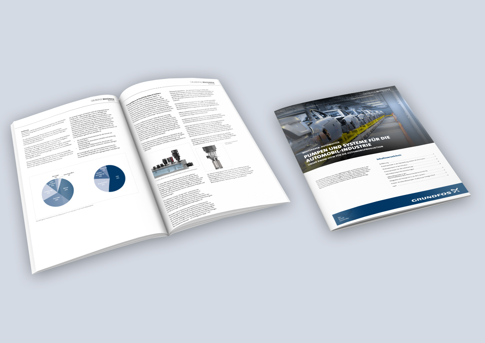 Grundfos Pump up Whitepaper